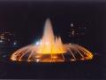Joubert Park 1