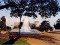 Joubert Park 2